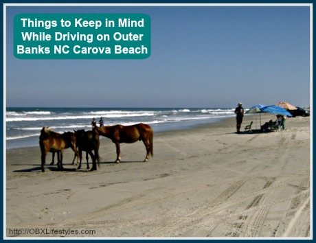 Here Are The Important Things That You Need To Remember When Driving In Carova Beach On