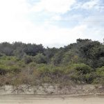 4th Row Lot at a GREAT Price 2234 Sandpiper Road Carova Beach NC $45,000