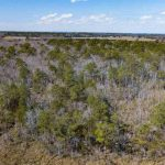 42 Acres on Jarvisburg Road