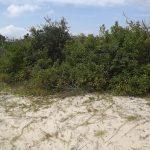 2148 Sandfiddler Road Carova Beach